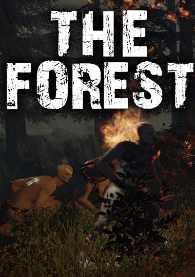 Скачать Игру The Forest 2016 Через Торрент На Русском Бесплатно - фото 11